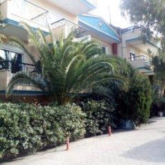 Отель Flesvos Греция, Пефкохори - отзывы, цены и фото номеров - забронировать отель Flesvos онлайн фото 3