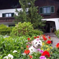 Отель Haus am Moos Австрия, Зальцбург - отзывы, цены и фото номеров - забронировать отель Haus am Moos онлайн фото 4