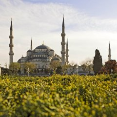 The Galata Istanbul Hotel Mgallery by Sofitel фото 6
