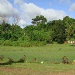 Отель Nalesutale Village Lodges Фиджи, Вити-Леву - отзывы, цены и фото номеров - забронировать отель Nalesutale Village Lodges онлайн фото 2