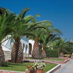Отель Blue Dolphin Hotel Греция, Метаморфоси - отзывы, цены и фото номеров - забронировать отель Blue Dolphin Hotel онлайн помещение для мероприятий фото 2