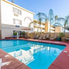 Отель Comfort Inn Near the Sunset Strip США, Лос-Анджелес - отзывы, цены и фото номеров - забронировать отель Comfort Inn Near the Sunset Strip онлайн бассейн фото 2