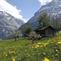 Отель Aspen Alpine Lifestyle Hotel Швейцария, Гриндельвальд - отзывы, цены и фото номеров - забронировать отель Aspen Alpine Lifestyle Hotel онлайн фото 5