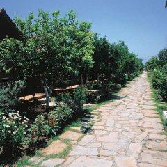 Hotel Ozlem Garden - All Inclusive фото 24