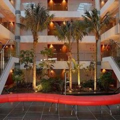 Отель Port Elche Испания, Эльче - отзывы, цены и фото номеров - забронировать отель Port Elche онлайн