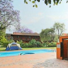 Отель Summit Hotel Непал, Лалитпур - отзывы, цены и фото номеров - забронировать отель Summit Hotel онлайн с домашними животными