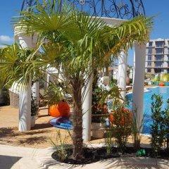 Отель Apartcomplex Harmony Suites 10 Болгария, Свети Влас - отзывы, цены и фото номеров - забронировать отель Apartcomplex Harmony Suites 10 онлайн фото 13