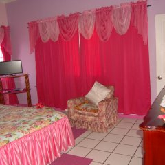 Отель PinkHibiscus Guest House детские мероприятия