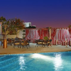 Arabian Park Hotel бассейн фото 3