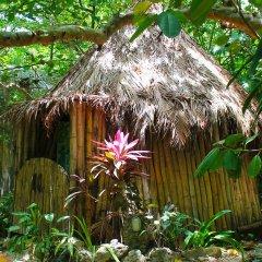 Отель Great Huts Ямайка, Порт Антонио - отзывы, цены и фото номеров - забронировать отель Great Huts онлайн фото 10