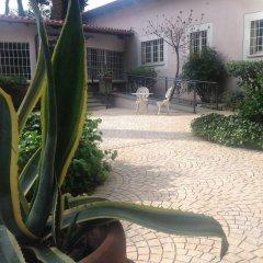 Отель Villa Abbamer Италия, Гроттаферрата - отзывы, цены и фото номеров - забронировать отель Villa Abbamer онлайн