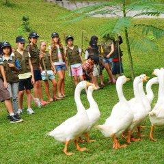 Padma Hotel Bandung с домашними животными