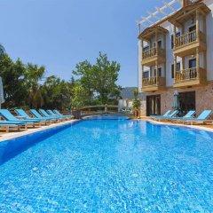 Elixir Hotel бассейн фото 2