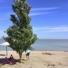 Гостиница Салют (Ейск) в Ейске отзывы, цены и фото номеров - забронировать гостиницу Салют (Ейск) онлайн пляж