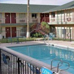 Отель The D Las Vegas США, Лас-Вегас - отзывы, цены и фото номеров - забронировать отель The D Las Vegas онлайн бассейн