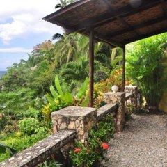 Отель Artistic Diving Resort фото 4