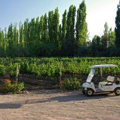 Отель Algodon Wine Estates and Champions Club Сан-Рафаэль городской автобус