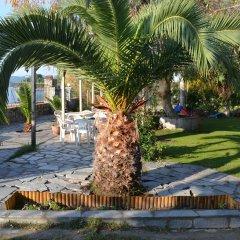 Отель Regos Resort Hotel Греция, Ситония - отзывы, цены и фото номеров - забронировать отель Regos Resort Hotel онлайн фото 8