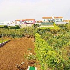 Отель Apartamento Terra e Mar II Понта-Делгада пляж