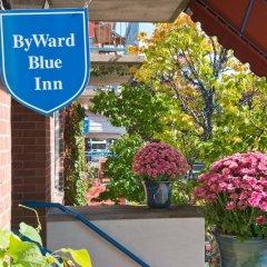Отель ByWard Blue Inn Канада, Оттава - отзывы, цены и фото номеров - забронировать отель ByWard Blue Inn онлайн фото 14
