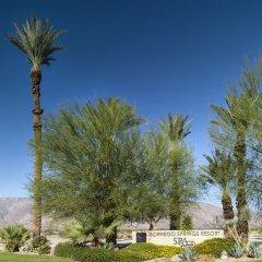 Отель Borrego Springs Resort and Spa фото 15