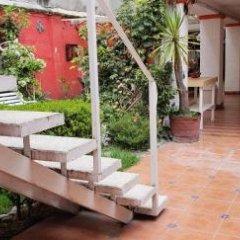 Отель Anys Hostal Мехико фото 4