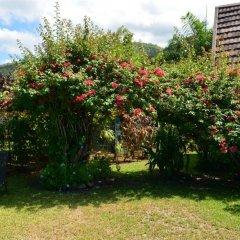 Отель Maison Te Vini Holiday home 3 Французская Полинезия, Пунаауиа - отзывы, цены и фото номеров - забронировать отель Maison Te Vini Holiday home 3 онлайн фото 3
