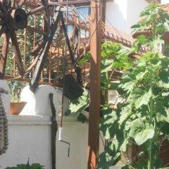 Anz Guest House Турция, Сельчук - отзывы, цены и фото номеров - забронировать отель Anz Guest House онлайн фото 5
