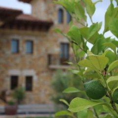 Отель Palacio Torre de Galizano Испания, Рибамонтан-аль-Мар - отзывы, цены и фото номеров - забронировать отель Palacio Torre de Galizano онлайн