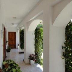 Отель Villa Margarit Албания, Саранда - отзывы, цены и фото номеров - забронировать отель Villa Margarit онлайн фото 11