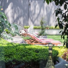 Отель Pug Seal B&B Coyoacan Мексика, Мехико - отзывы, цены и фото номеров - забронировать отель Pug Seal B&B Coyoacan онлайн фото 10