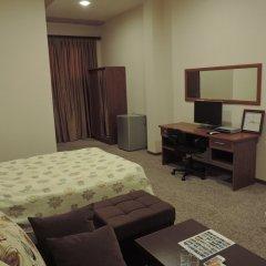 Отель Areg Hotel Армения, Ереван - 4 отзыва об отеле, цены и фото номеров - забронировать отель Areg Hotel онлайн удобства в номере фото 2