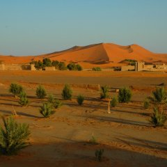 Отель Auberge Africa Марокко, Мерзуга - отзывы, цены и фото номеров - забронировать отель Auberge Africa онлайн фото 3