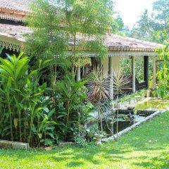 Отель Plantation Villa Ayurveda Yoga Resort фото 5