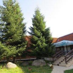 Отель Ela Болгария, Боровец - отзывы, цены и фото номеров - забронировать отель Ela онлайн бассейн