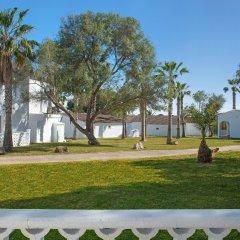 Club Hotel Tropicana Mallorca - All Inclusive с домашними животными