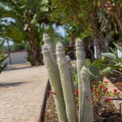 Отель Protaras Views Villa Кипр, Протарас - отзывы, цены и фото номеров - забронировать отель Protaras Views Villa онлайн фото 5