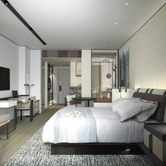 Отель Kapok Shenzhen Luohu Китай, Шэньчжэнь - отзывы, цены и фото номеров - забронировать отель Kapok Shenzhen Luohu онлайн комната для гостей фото 4