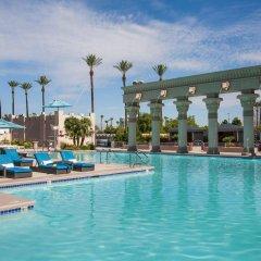 Отель Luxor бассейн фото 3