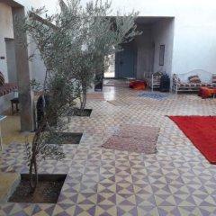 Отель Camels House Марокко, Мерзуга - отзывы, цены и фото номеров - забронировать отель Camels House онлайн фото 6