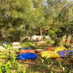 Гостевой Дом Dionysos Lodge с домашними животными