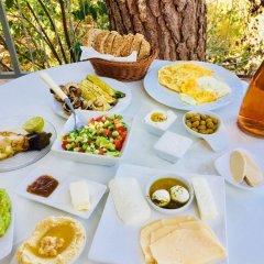 Отель Tur Sinai Organic Farm Resort Иерусалим питание фото 3