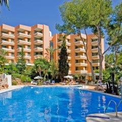 Отель Globales Nova Apartamentos Испания, Магалуф - 1 отзыв об отеле, цены и фото номеров - забронировать отель Globales Nova Apartamentos онлайн