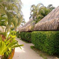 Отель Village Temanuata Французская Полинезия, Бора-Бора - отзывы, цены и фото номеров - забронировать отель Village Temanuata онлайн фото 15