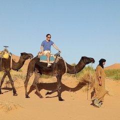 Отель Night Desert Camp Марокко, Мерзуга - отзывы, цены и фото номеров - забронировать отель Night Desert Camp онлайн с домашними животными