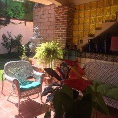 Отель Maria Del Alma Guest House Мексика, Мехико - отзывы, цены и фото номеров - забронировать отель Maria Del Alma Guest House онлайн фото 17