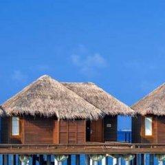 Отель Sheraton Maldives Full Moon Resort & Spa Мальдивы, Остров Фуранафуши - отзывы, цены и фото номеров - забронировать отель Sheraton Maldives Full Moon Resort & Spa онлайн фото 7