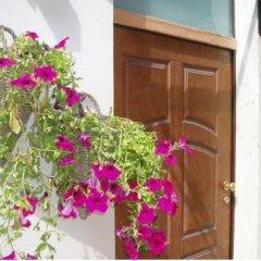 Отель Bed & Roses Италия, Монтезильвано - отзывы, цены и фото номеров - забронировать отель Bed & Roses онлайн балкон