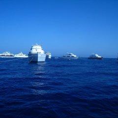 Отель New DaVinci Beach & Diving Resort фото 2