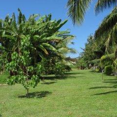 Отель Taharuu Surf Lodge Французская Полинезия, Папеэте - отзывы, цены и фото номеров - забронировать отель Taharuu Surf Lodge онлайн фото 23